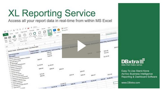XL Reporting Service Video